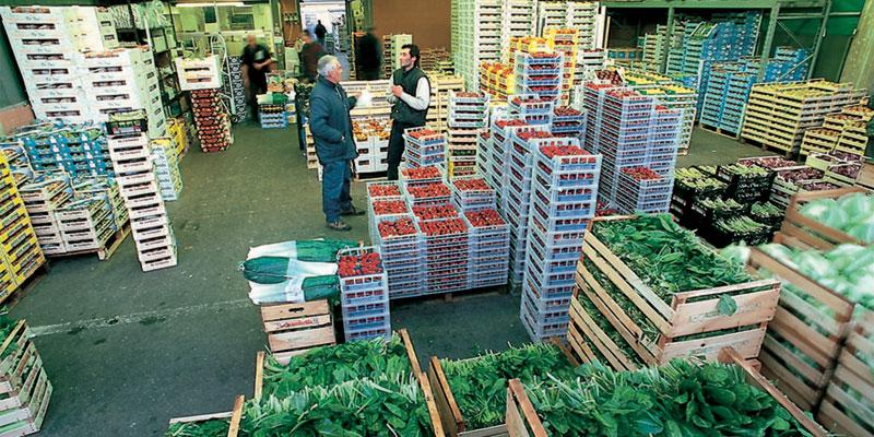 Bergamo mercati - Il mercato della piastrella moncalieri orari ...